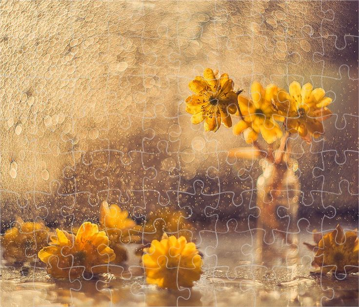 Flowers Art, Painting, Flowers