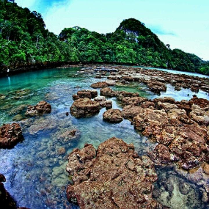 Sempu Island Malang Indonesia