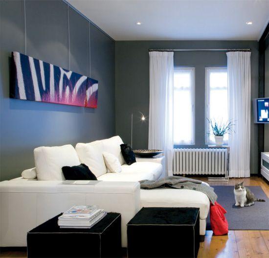 Salon moderne / modern living room