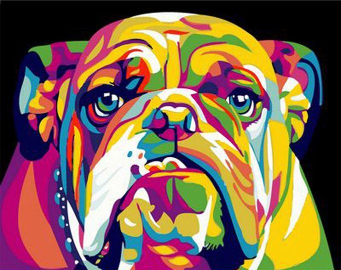 malen nach zahlen französische bulldogge  tier malen