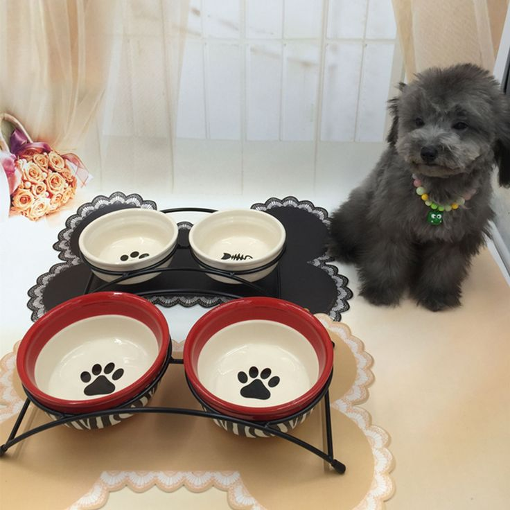 ==> [Free Shipping] Buy Best High Quality Portable Pet Dog Bowl Ceramic Travel Water Dogs Food Container Comederos Perros Puppy Cuenco Perro Pet Tool 50Z0729 Online with LOWEST Price | 32817107668