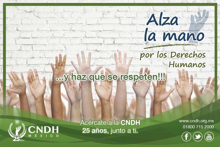 Comisión Nacional de los Derechos Humanos -México