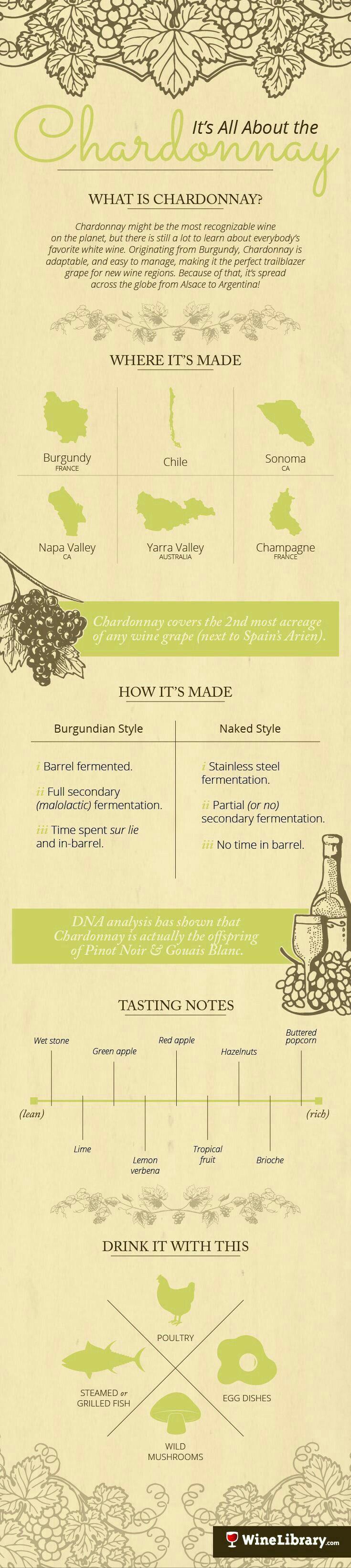 Chardonnay graphic