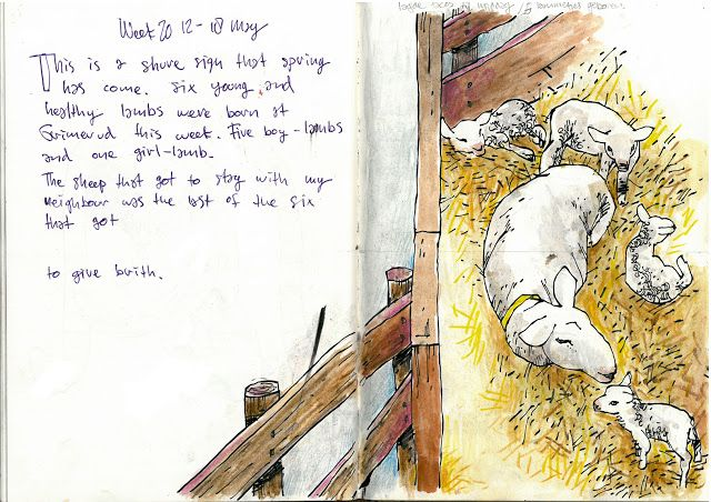 Drawing Diary: Week 20 2013 nr1