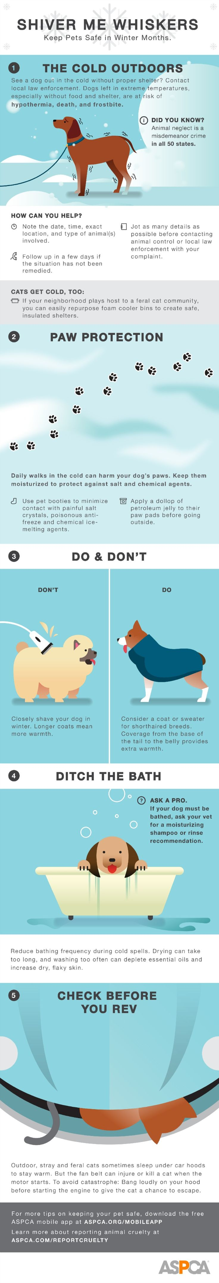 Keep your pets warm with these cold weather tips! Visit our site for an animated version: http://www.aspca.org/blog/battling-frigid-temps-and-icy-conditions-our-cold-weather-infographic-will-help