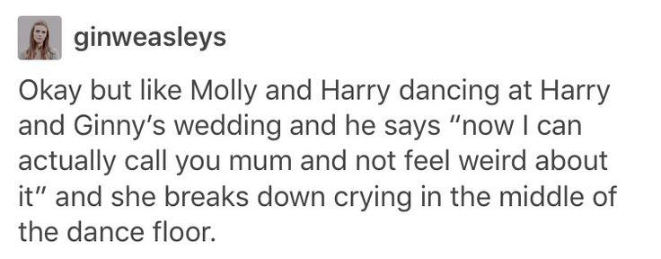 Molly Weasley Arthur Weasley the weasleys Harry Potter Hogwarts the Dursleys Ginny Weasley hinny