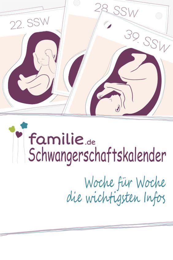 Wir begleiten Euch durch 40 spannende Wochen Schwangerschaft: hilfreiche Tipps & wichtige Infos.