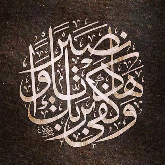 Instagram Photo Feed on the Web - Gramfeed | abojamalalwadei (ابو جمال الوادعي)