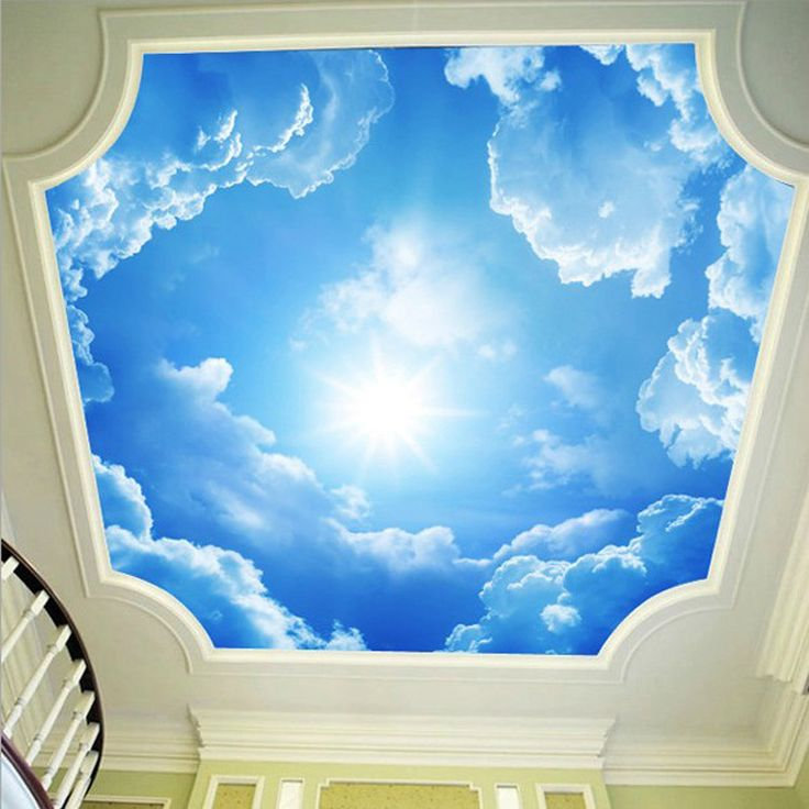 Best 25 ceiling murals ideas on pinterest sky ceiling for Ceiling sky mural