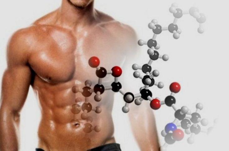Los Aminoácidos ramificados o BCAAs son aminoácidos esenciales que se deben…