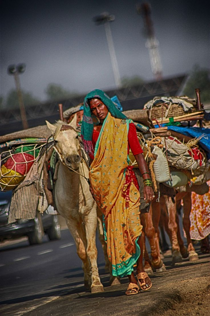 the Migration - Tribal group migrating with their livestock for better places water n food is available.
