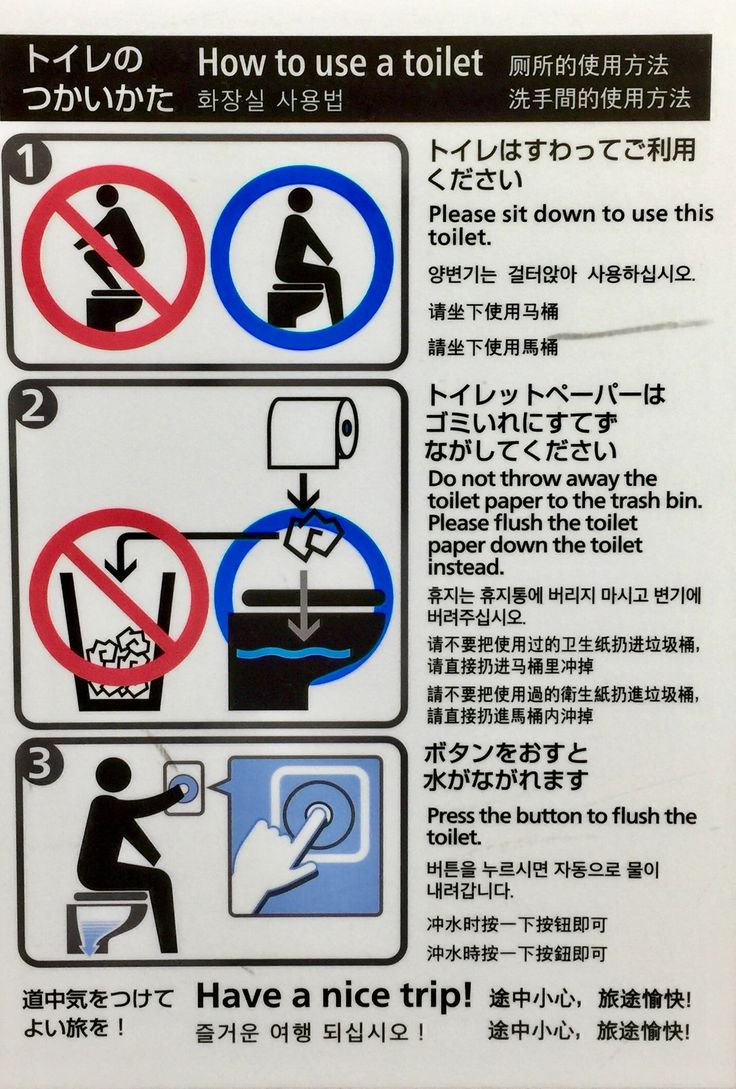 """Dummies guide to how to use toilet in Japan.  Perhaps the most polite country in the world as evident by farewell comment, """"have a nice trip"""""""