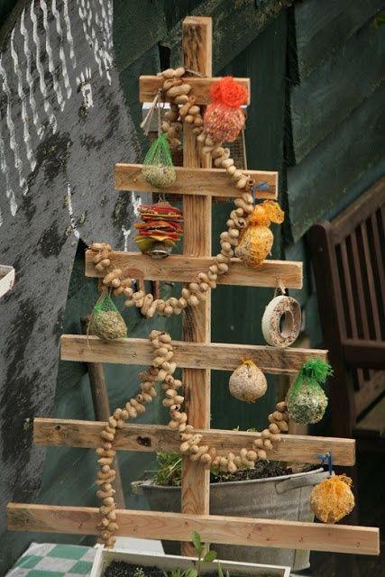 Bezig: Vogelfeestje!