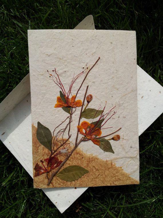 этого сухие листья для открыток выставке
