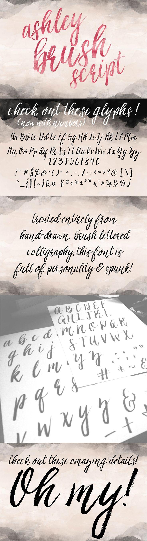 Ashley Brush Script Font by Printable Wisdom   22 Professional & Artistic Fonts Apr 2015