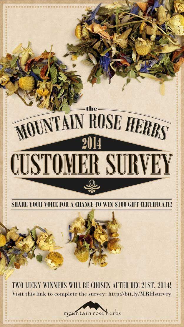 10+ ide Customer survey terbaik di Pinterest Infografis - customer survey