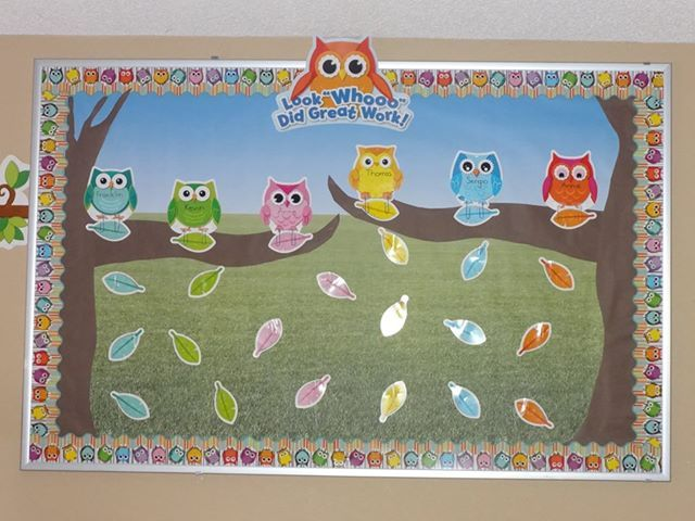 Classroom Bulletin Board Ideas With Owls ~ Best colorful owls classroom decor images on