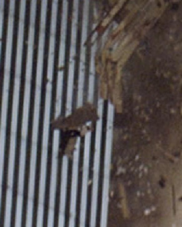 The pictures below reportedly show a person holding to a piece of the World Trade Center as it collapses to the ground in 2001