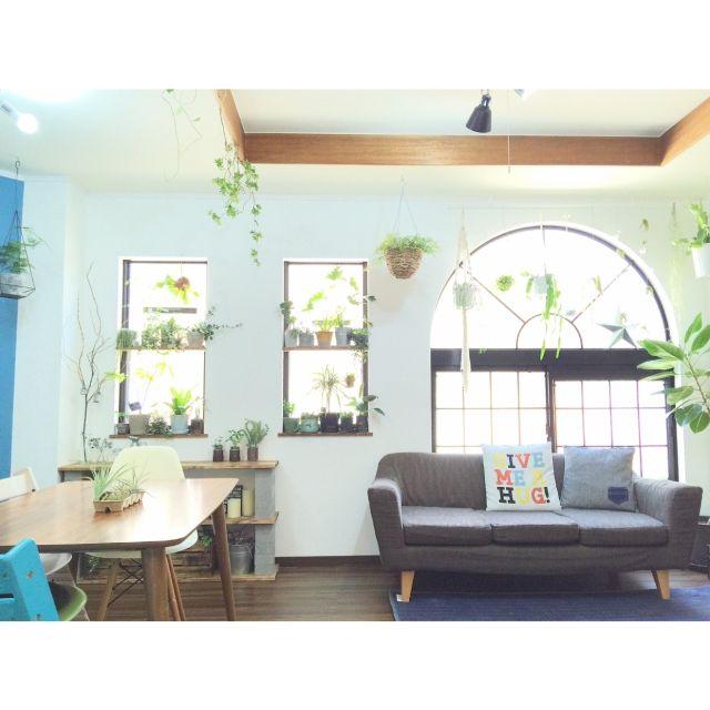 kiki_nekkoさんの、My Desk,植物,中古住宅,いなざうるす屋さん,NO GREEN NO LIFE,関西好きやねん会,ボタニカルライフ,植物のある暮らし,ZOO会♡,【植中毒】,インスタ→kiki_nekko,グリーンディスプレイ,スッキリ爽やかインテリア,グリーンと暮らす心地よい部屋,ベストショットについての部屋写真