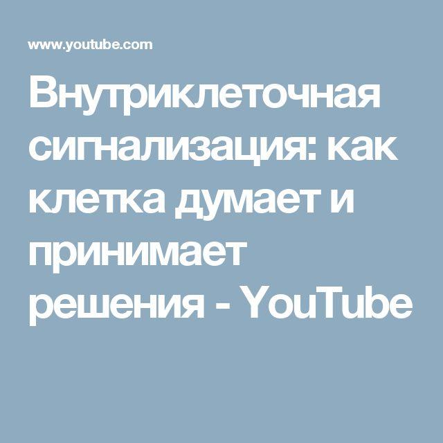 Внутриклеточная сигнализация: как клетка думает и принимает решения - YouTube