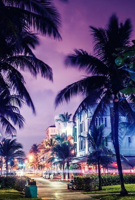 Miami Beach Via Ale Fontalvo In 2018 Photography Pinterest Florida And