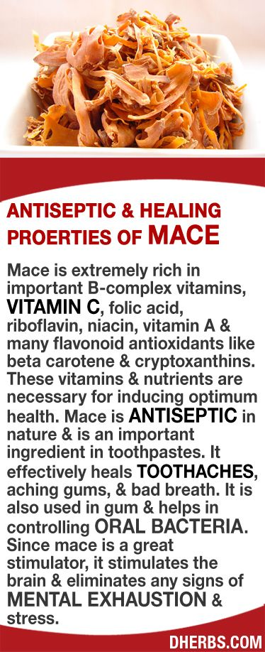 Mace is extremely rich in important B-complex vitamins, vitamin C, folic acid, riboflavin, niacin, vitamin A & many flavonoid antioxidants. These vitamins & nutrients are necessary for optimum health. Mace is antiseptic in nature & is an important ingredient in toothpastes. It effectively heals toothaches, aching gums, bad breath & helps in controlling oral bacteria. Since mace is a great stimulator, it stimulates the brain & eliminates any signs of mental exhaustion & stress. #dherbs