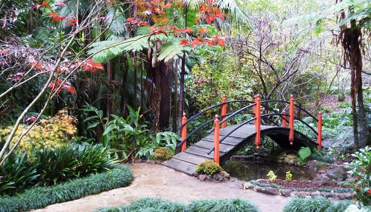 Japanese Garden - Tamborine Mountain Botanic Gardens
