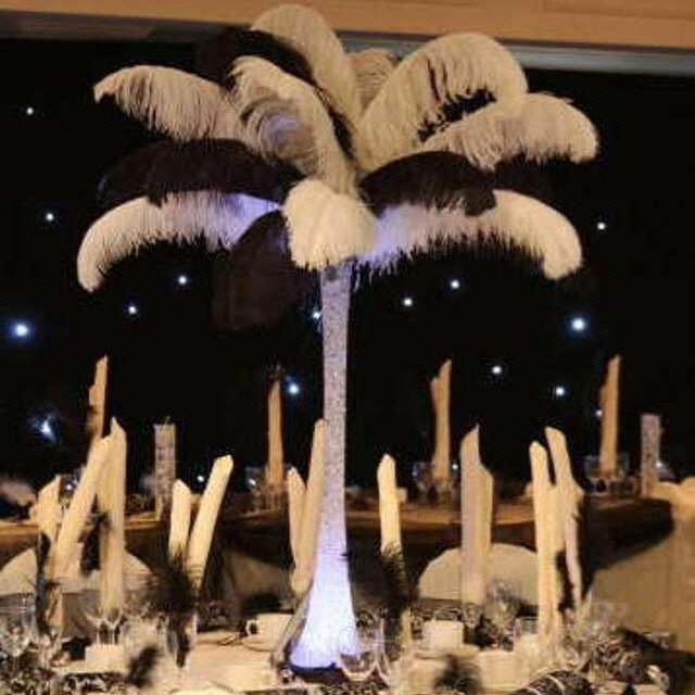 Ostrich Feather Symbol