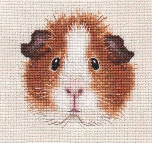 TAN-GUINEA-PIG-Complete-counted-cross-stitch-kit-Exclusive-Design