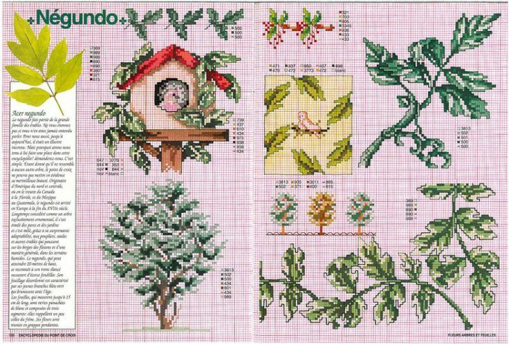 Gallery.ru / Фото #21 - Encyclopedie du point de croix ( Fleurs arbres et feuilles ) - tymannost