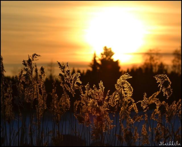 Penikanvirta, Finland