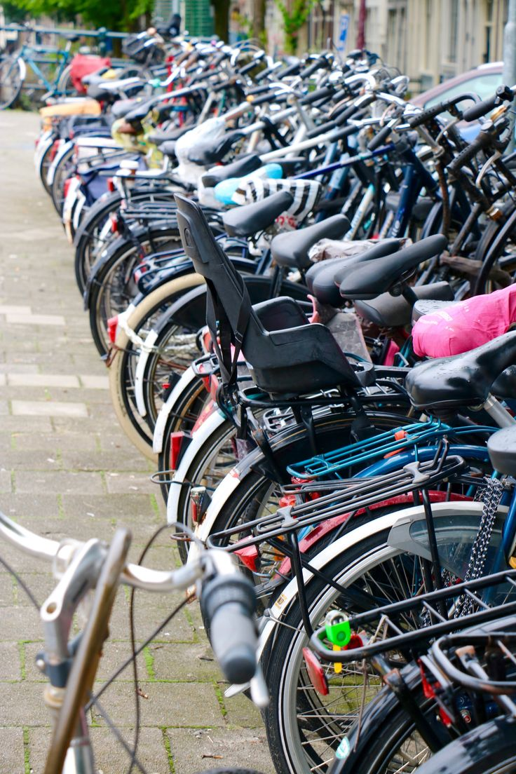 Strolling through Amsterdam