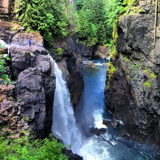 Checking out the 27 metre (89 foot) drop at Elk Falls Provincial Park, Vancouver Island