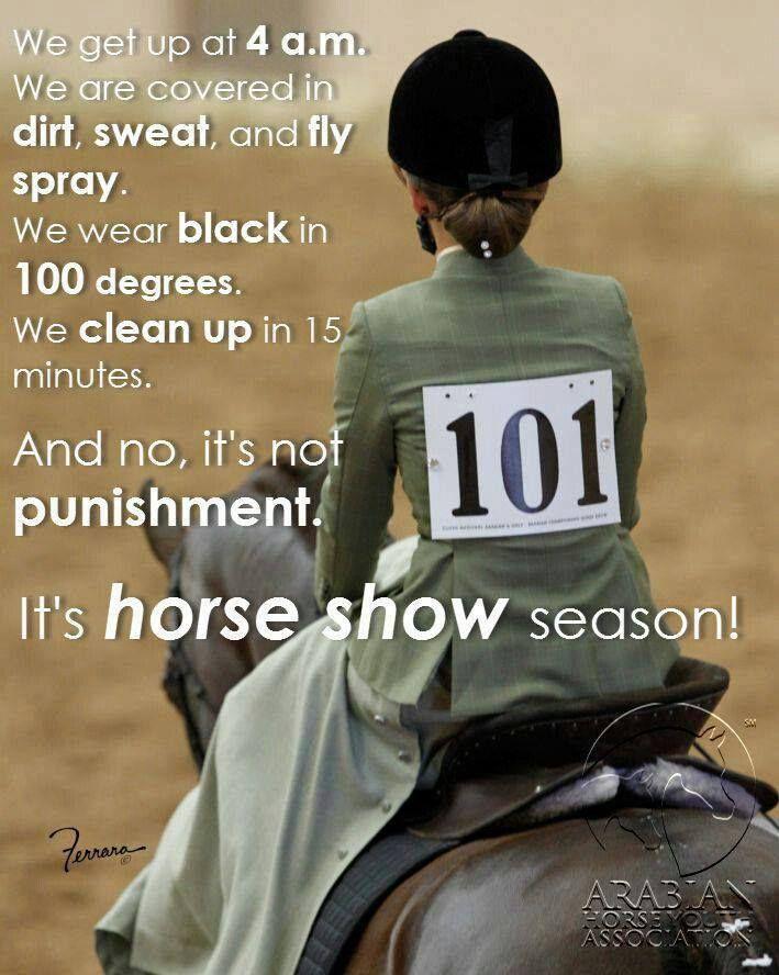 Horse Show Quotes. QuotesGram