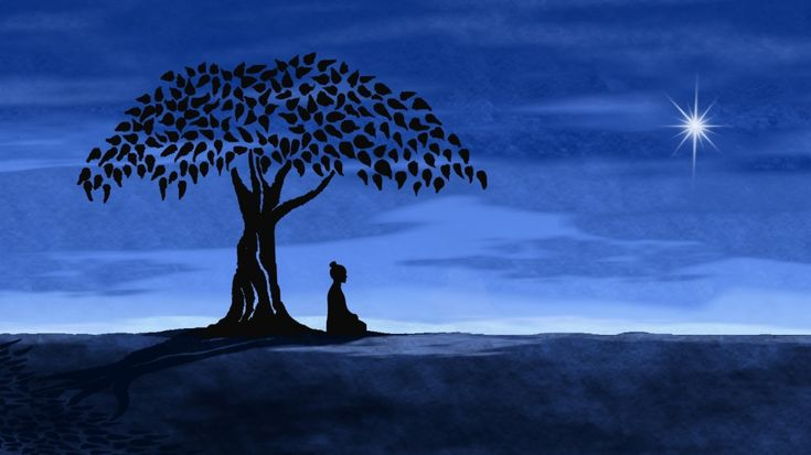 BuddhaPeace Quotes, Buddha Quote, Trees Of Life, Google Search, Inner Peace, Meditation, Night Sky, Yoga, World Peace