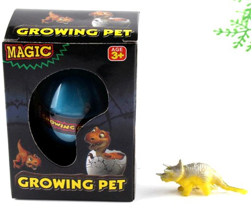 BOHS Gift Box Hatching Inflatable Animals Growing  Pet Dinosaur  Turtle  Lizard Swelling Eggs Toys