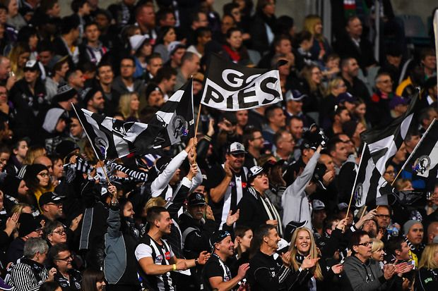 AFL 2015 Rd 13 - Fremantle v Collingwood - AFL.com.au
