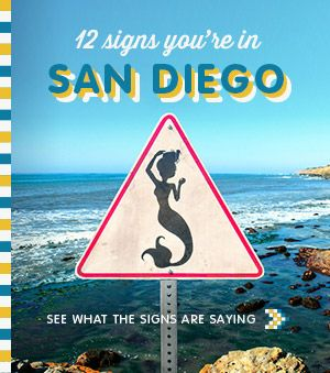 http://www.sandiegocoastrentals.com - Check out the San Diego Fun! Time to get out of the cold, come stay in one of our beach front vacation homes ==> special seasonal pricing, check it out http://www.sandiegocoastrentals.com #seasonaldeals #vacationrentals #sandiego