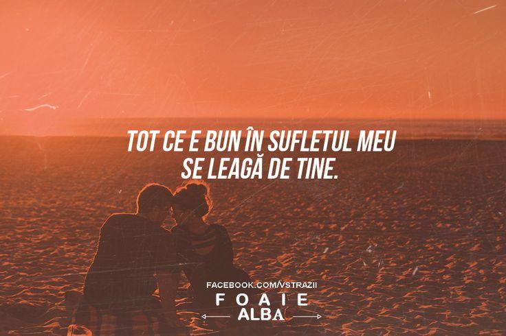 Dragoste sau Frica? : Photo