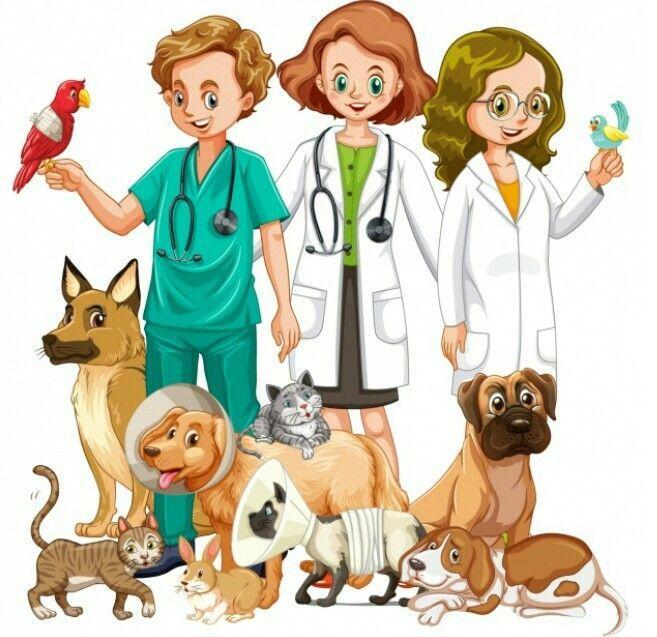 Imagenes Animadas De Veterinaria Buscar Con Google Veterinaria Dibujo Veterinaria Dia Del Medico Veterinario