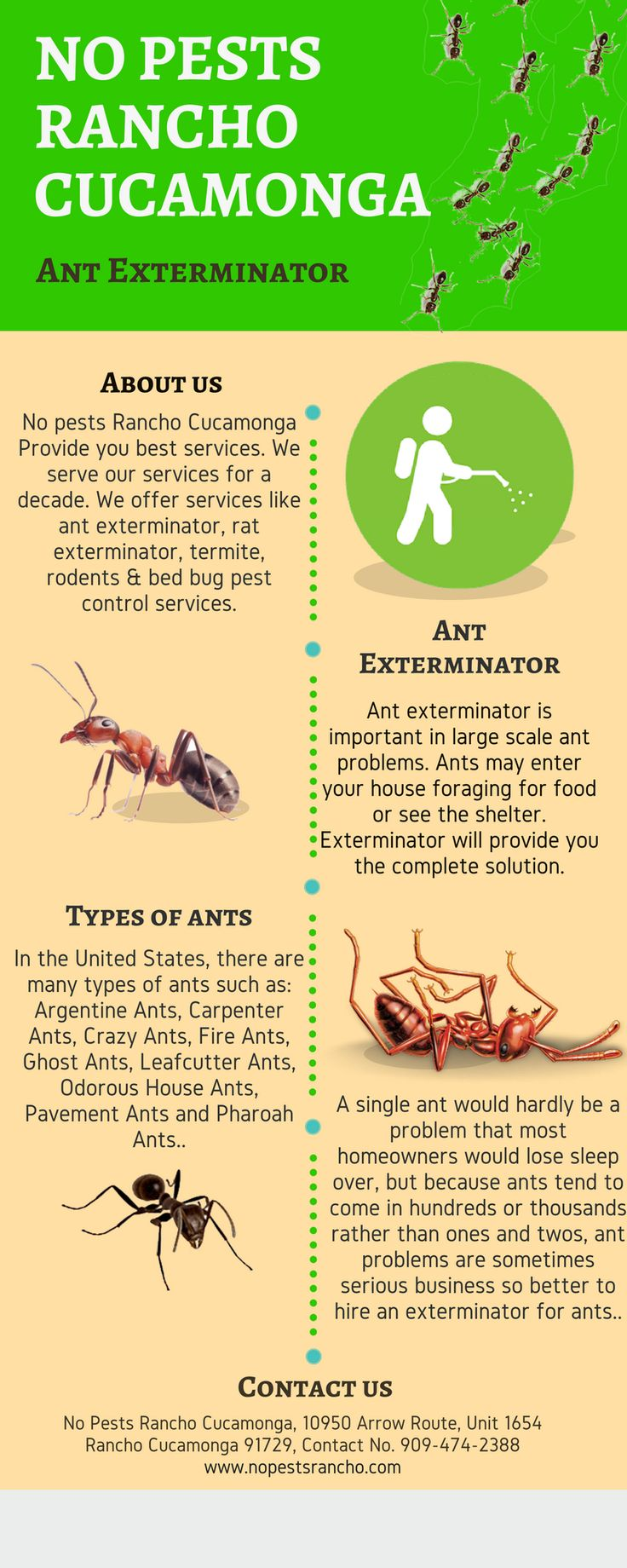 Are you searching for an ant exterminator in Rancho Cucamonga & Claremont? If yes, Then No Pests Rancho Cucamonga serves you the best services. They have an experienced team member who does their job very excellent. They also offer services like rat exterminator, termite, rodents, roaches & bed bug pest control. For more details you can visit at - http://nopestsrancho.com/