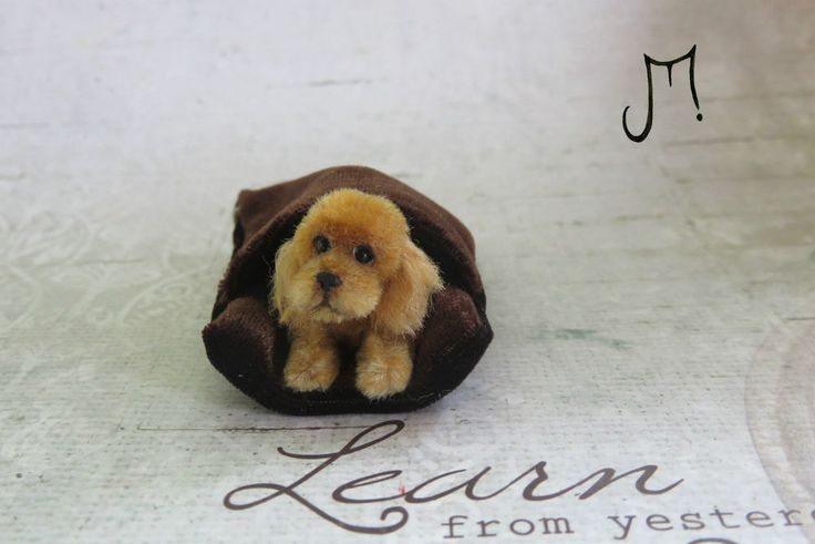 OOAK Handmade Miniature Cockapoo Dog 1:12 scale Dollhouse IGMA J Parrott UK