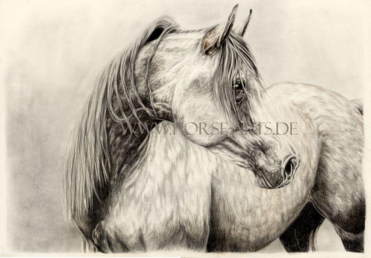 Arabian Stallion by Oceansoul84 on DeviantArt