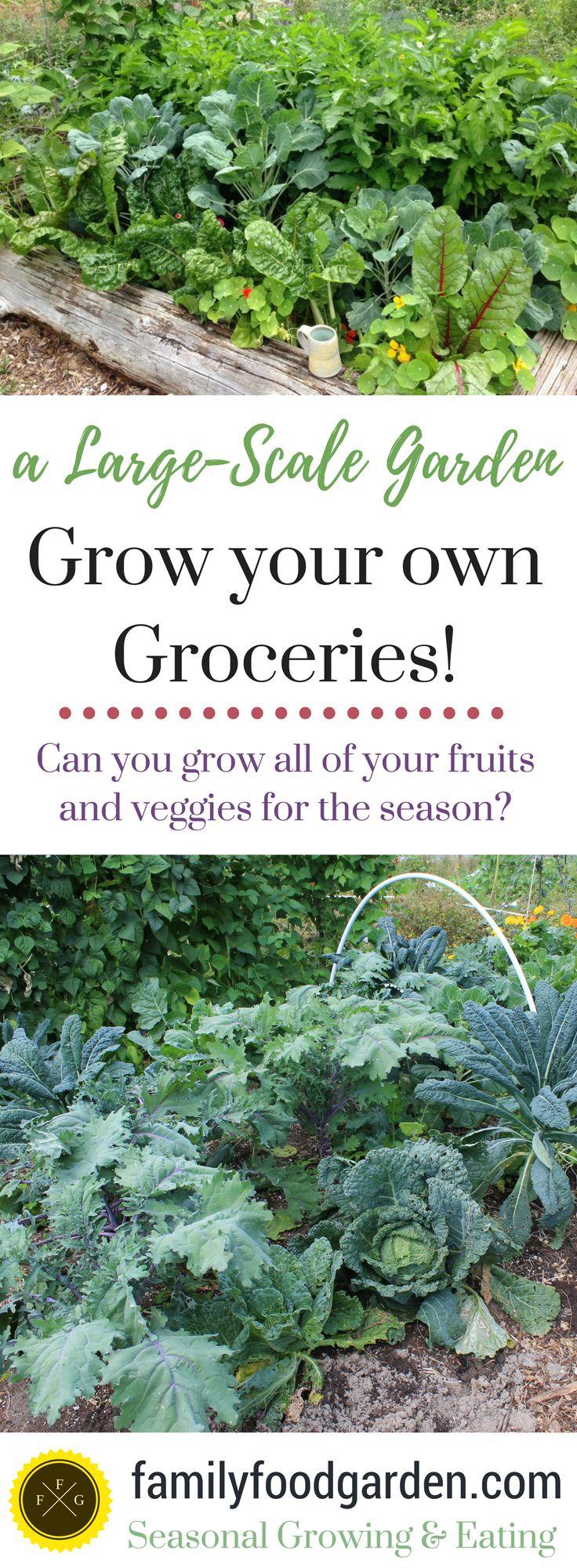 The Self-Reliance Garden