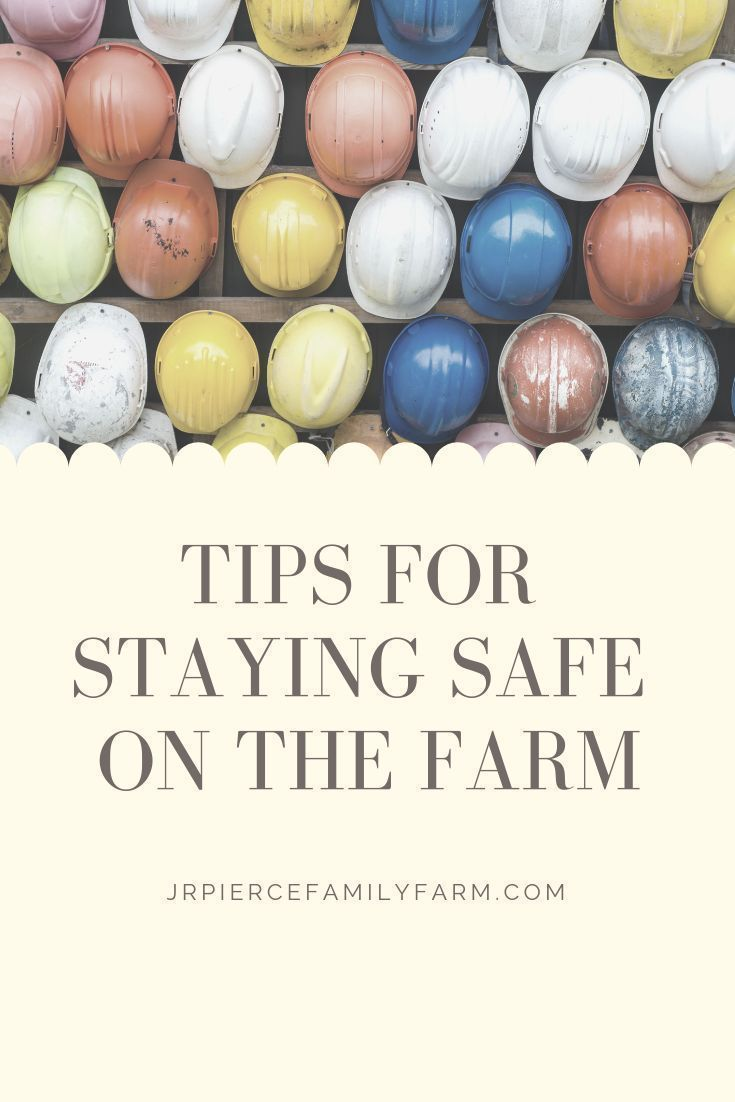 How to build a first aid kit for your farm  – Raised Bed Gardening