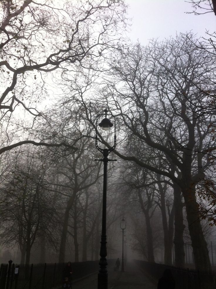 eerie morning in highbury fields. overheard a child ask her mother why the clouds had come down from the sky.