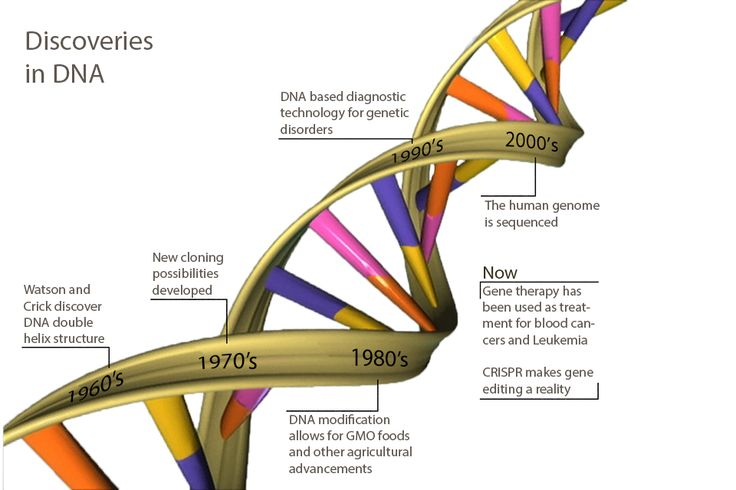Image result for A new way to edit DNA may speed the advance of - genetic engineer sample resume