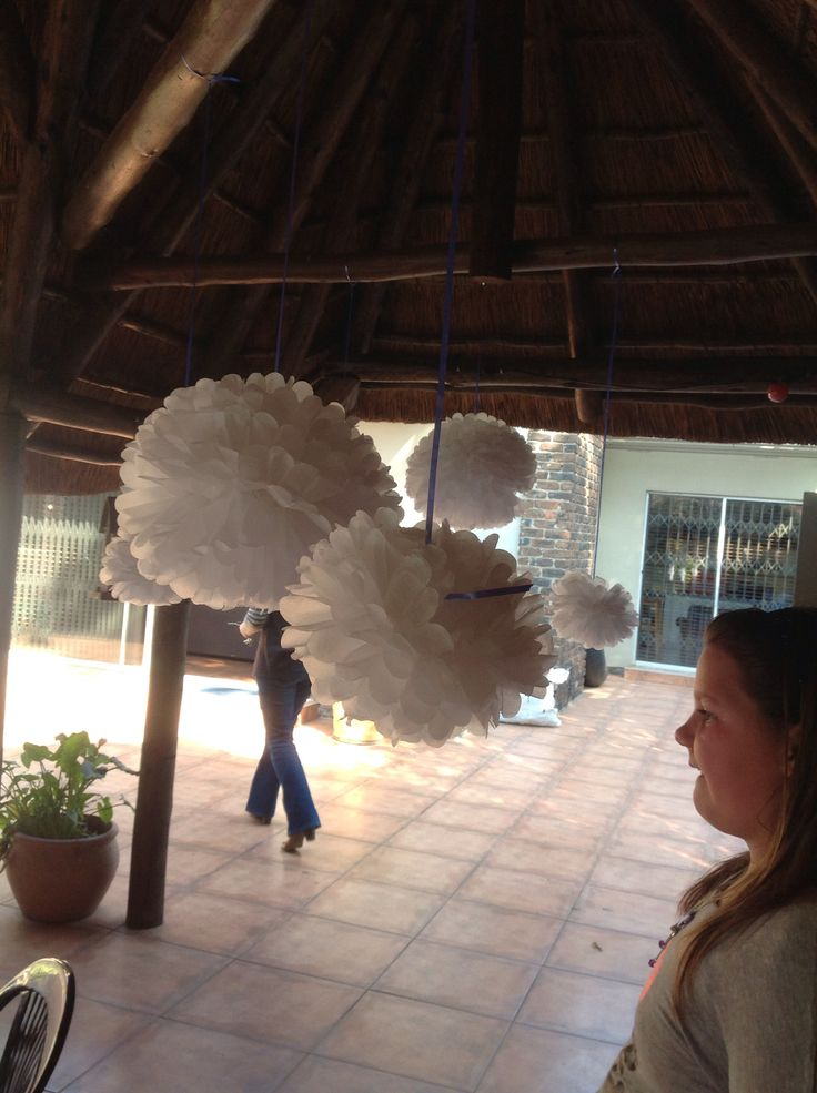 """Snowballs"" hanging from the lapa"