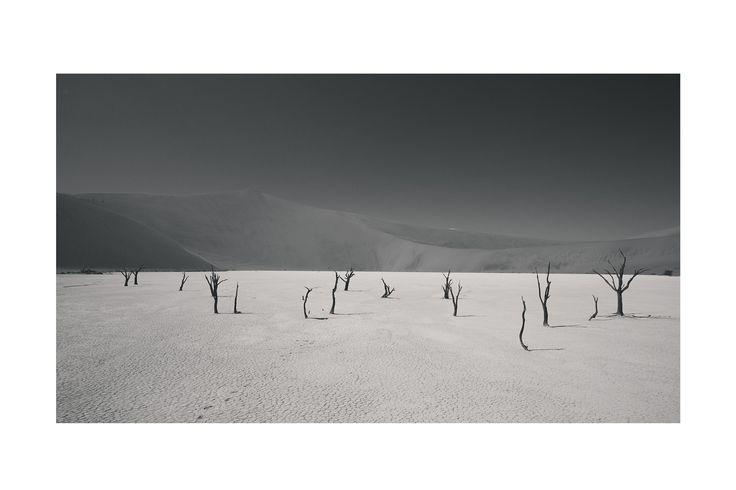 dead vlei - softblur photography