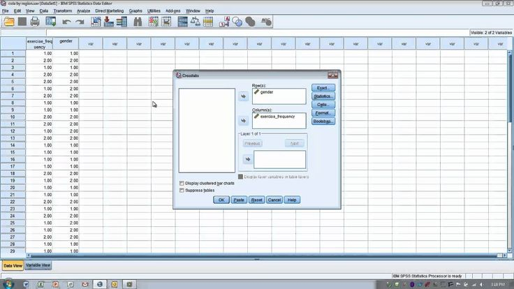 How to Use SPSS:Chi Square Test for Independence or Crosstabulation (2x2)